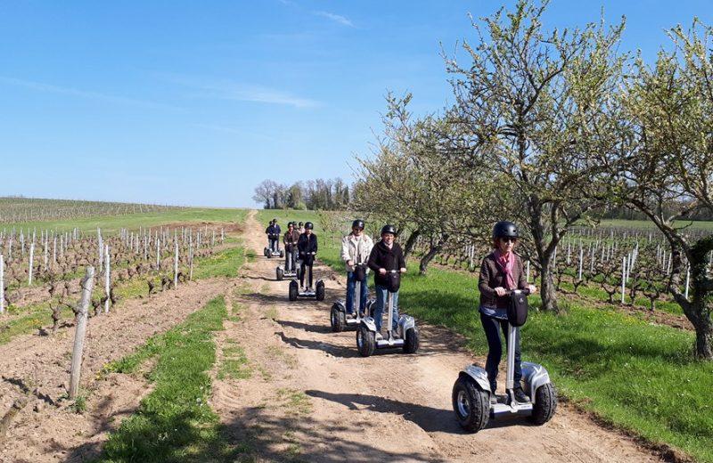 2018-gyroway balade vignes-levignobledenantes-tourisme [1024×768]