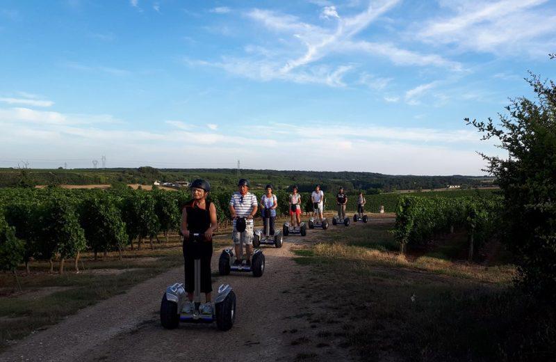 2018Gyroway-visite-vignes-coucher-soleillevignobledenantes-tourisme [1024×768]