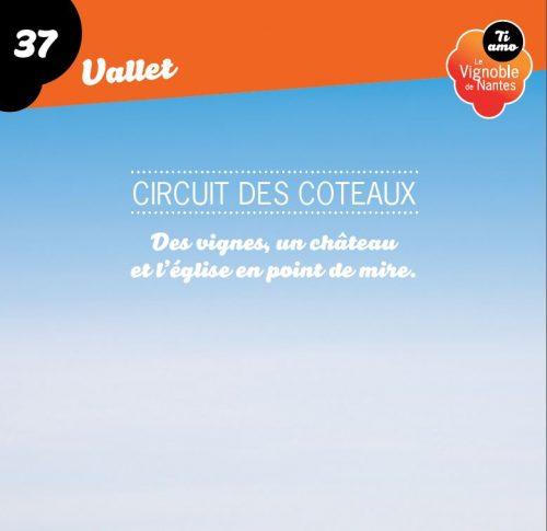 Fiche circuit des coteaux à Vallet