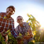 Domaine Poiron Dabin vignerons marche gourmand muscadetours