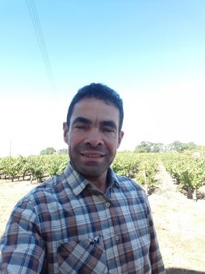 domaine duaux vignerons agapes muscadetours 2019 le vignoble de nantes