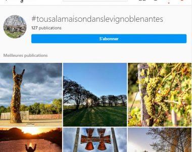 L'Office de Tourisme du Vignoble de Nantes se mobilise aux côtés des partenaires du territoire