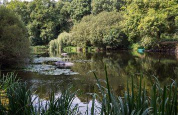 visite-nature-boussay-progrdv-2020-vn-Region-PDLL-Fourny-OTVN