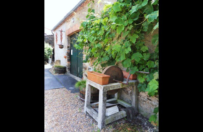 2014-domaineBidgi-chateauthebaud-44-DEG-BD17822