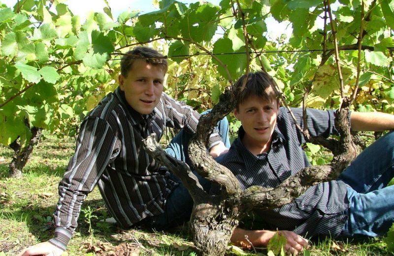 2015-GT-degustations-domaine -epinay-  paquereau-clisson-44-DEG-
