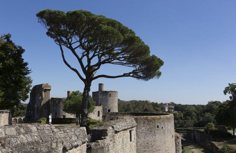 2016-chateau-clisson-44©Neveu-Derotrie-GPLA-levignobledenantes-tourisme-PCU (2)