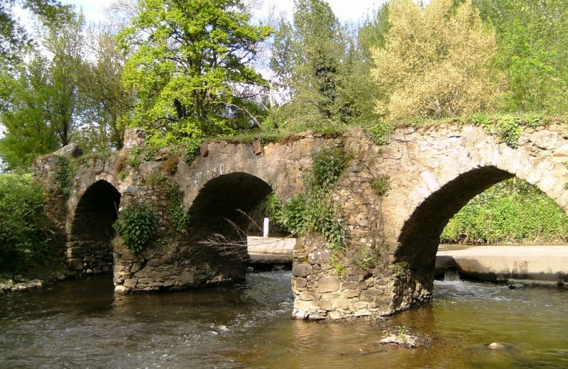 2017-pont-gallo-roman-patrimoine-etat-avant restauration