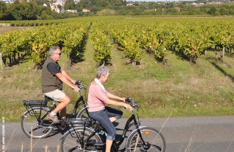 2018-bel-abord-location-velo2-chateau-thebaud-44-levignobledenantes-tourisme