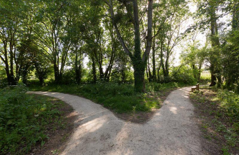 2018-coulee-logne-vallet-vignoblenantes-tourisme (1)