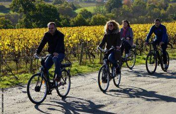 2018GT-bel-abord-location-velo7-chateau-thebaud-44-levignobledenantes-tourisme
