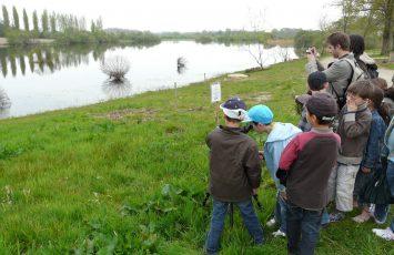 2018GuideJuniors-atelier-nature-marais-goulaine-levignobledenantes