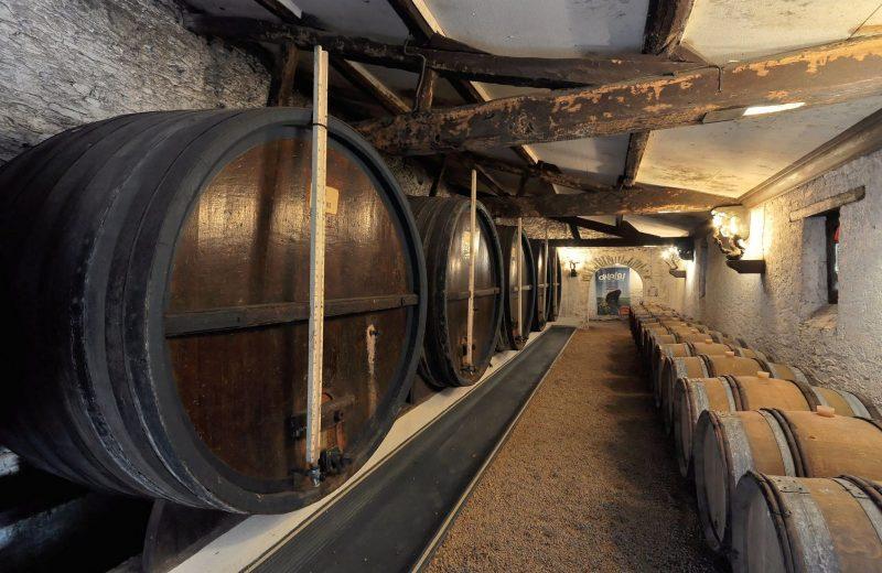 2019-cave-foudres-degustation-chateau-cassemichere-lachapelleheulin-44-levignobledenantes