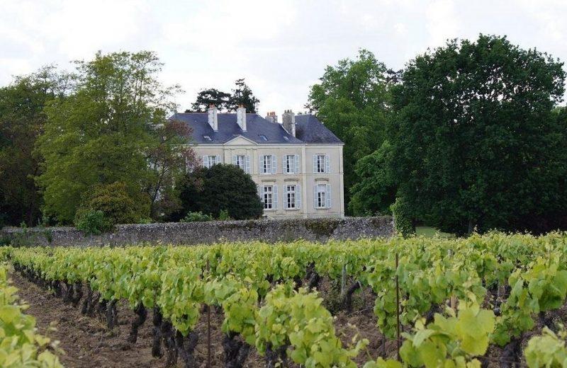 2019-chambre-hotes-les-montys-haute-goulaine-HLO-44-levignobledenantes (8)