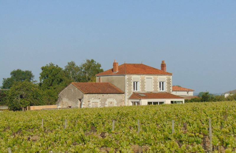 2019-degustation-chateau-fromenteau-vallet-44-DEG