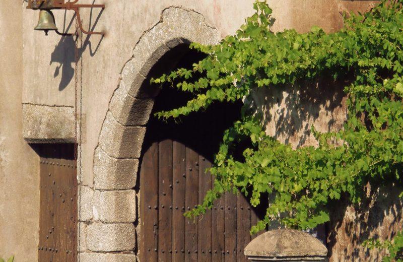 2019-vignerons-oenotourisme-freres-couillaud1-la-regripiere-levignobledenantes