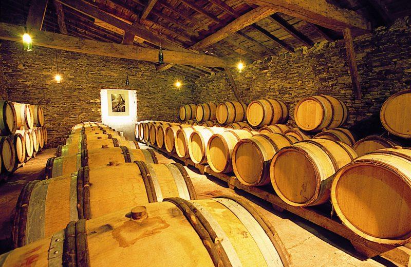2019-vignerons-oenotourisme-freres-couillaud6-la-regripiere-levignobledenantes