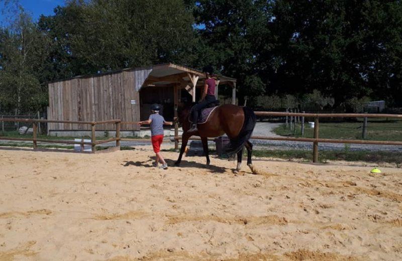 balade-poney-vignes-en-selle-enfants-st-crespin-sur-moine-sevremoine-nantes