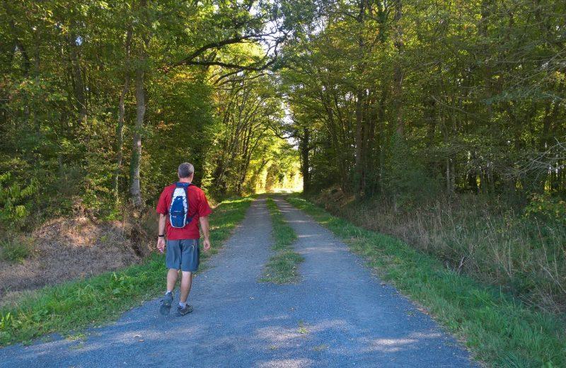 Circuit de Maine en vignes – St Lumine de CLisson