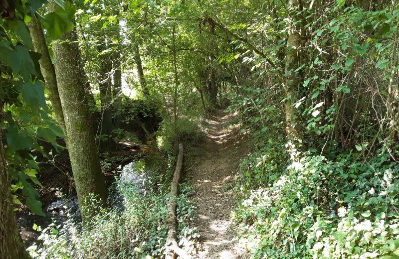 Circuit du Moulin Barbet (4)