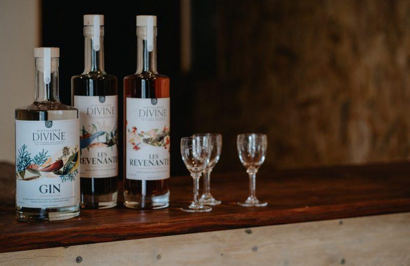 Distillerie DIvine – Dégustation