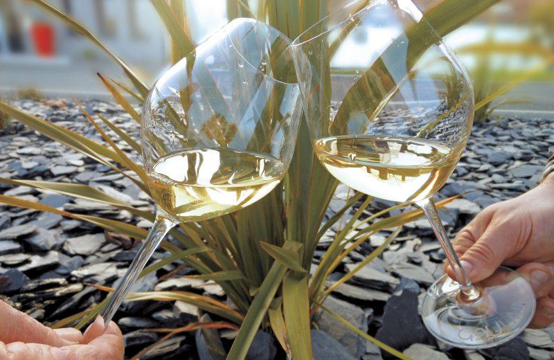 2020-muscadet-domaineraphaëlluneau-lelandreau-44-vignobledenantes