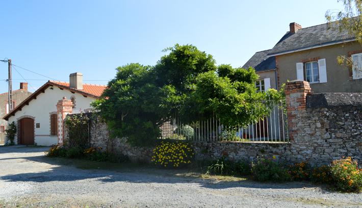 Domaine de la chauvinière-vignobledenantes