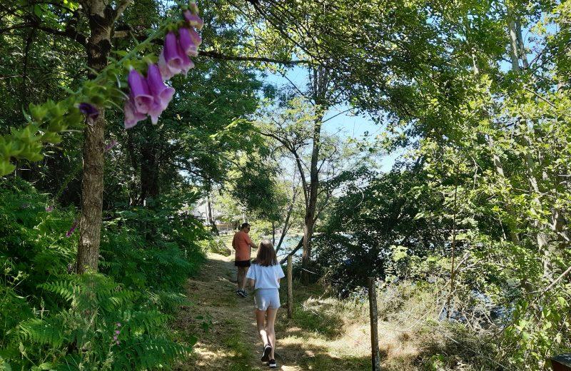 GRP Sevre et Maine Maine entre Remouillé et Aigrefeuille