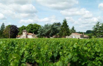 GuideGroupe2018-degustation-prestige-chateau-chasseloir1-st-fiacre-levignobledenantes