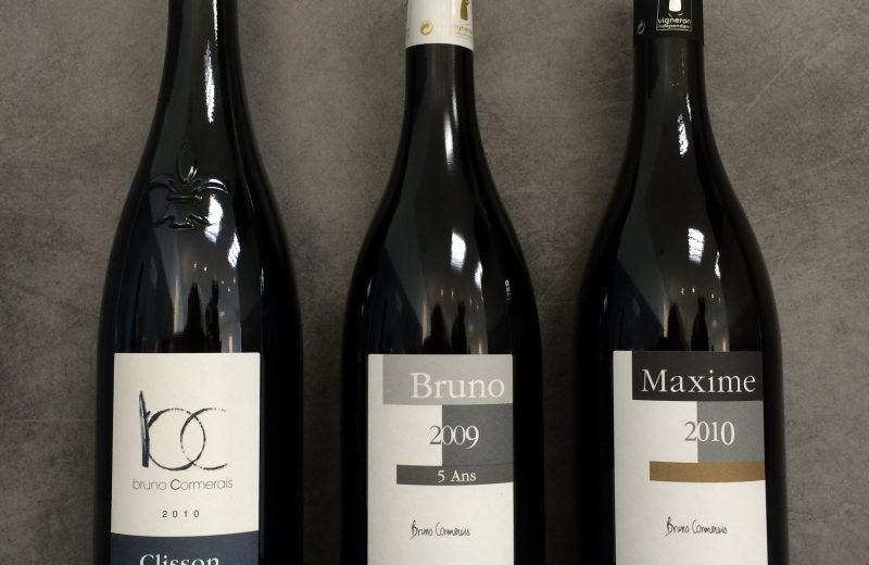 2018-domaine-bruno-cormerais-st-lumine-de-clisson-44-levignobledenantes-tourisme