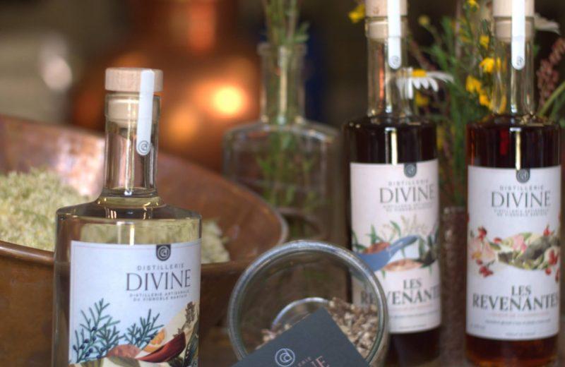 Distillerie Divine – Produits