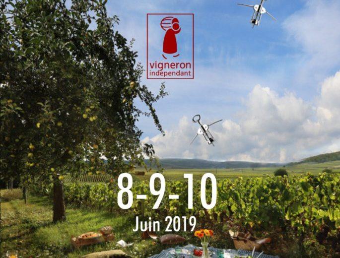 Pique-nique-vigneron-levignobledenantes-2