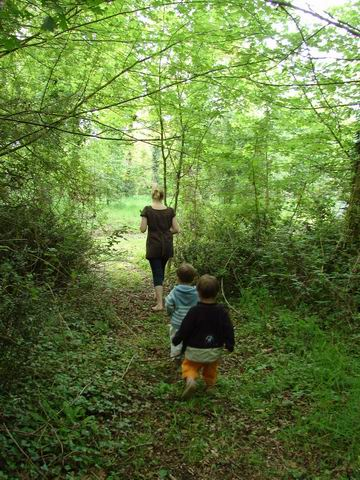 Petit Bois Charmant