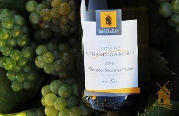 Reaps et degustaiton au domaine Ménard-Gaborit  Le vignoble de Nantes