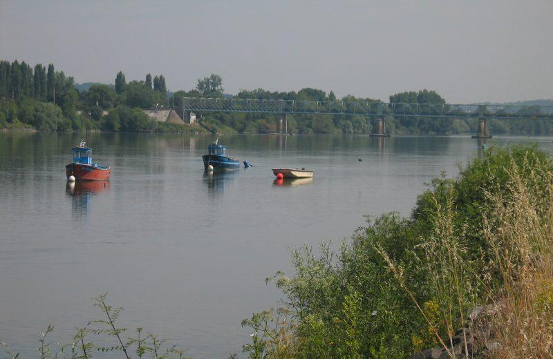 La Loire St Julien de Concelles