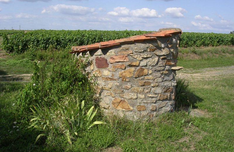 boucle-pont-caffino-chateaut-thebaud-44-ITI (3)