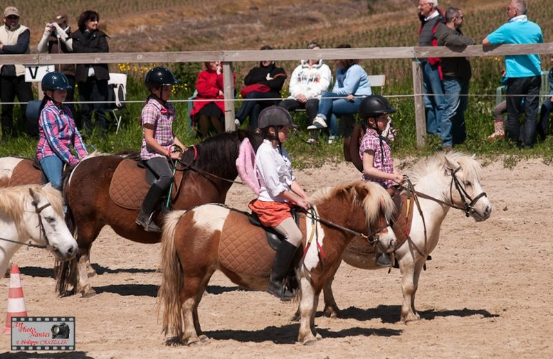 centre-equestre-roseaux-de- goulaine-haute-goulaine-44-LOI(3 )