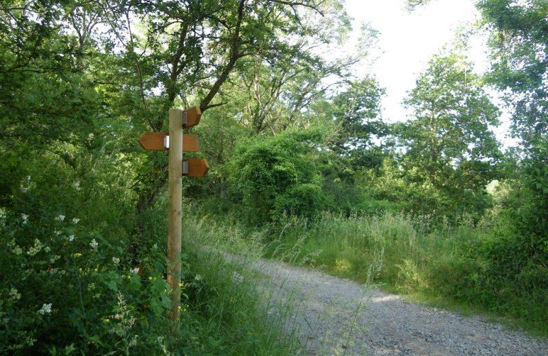 circuit-boucle-pedestre-moulins-chateaux-la-haye-fouassiere-44-ITI (2)
