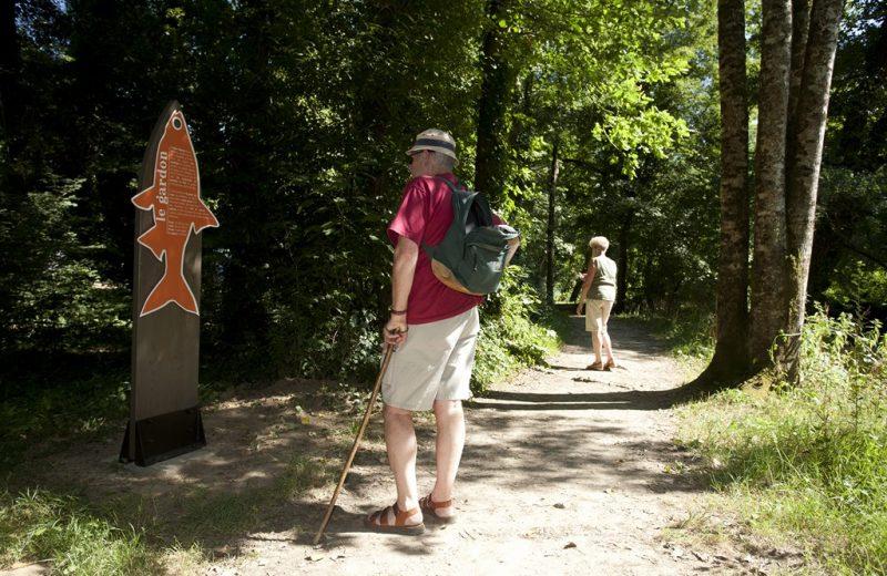 circuit-boucle-pedestre-soif-de-nature-maisdon-sur-sevre-44-ITI (6)