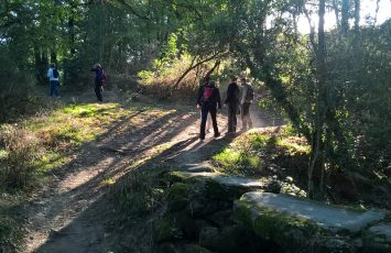 circuit des rochers boussay (2)