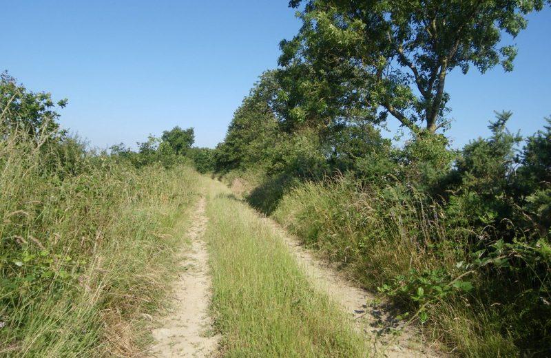 circuit-htedivatte-laremaudiere-levignoblenantes-tourisme (2)