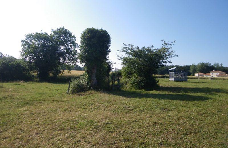 circuit-htedivatte-laremaudiere-levignoblenantes-tourisme (3)