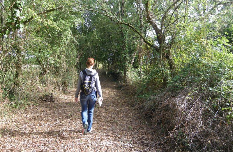 circuit-les-piliers-le-landreau-levignoblenantes-tourisme (2)