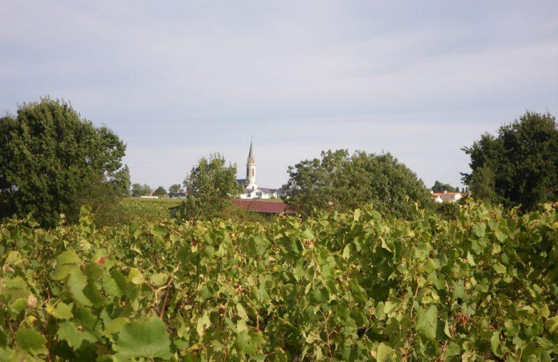circuit-les-piliers-le-landreau-levignoblenantes-tourisme (3)