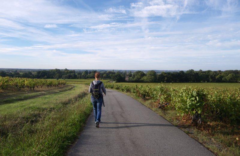 circuit-les-piliers-le-landreau-levignoblenantes-tourisme (7)
