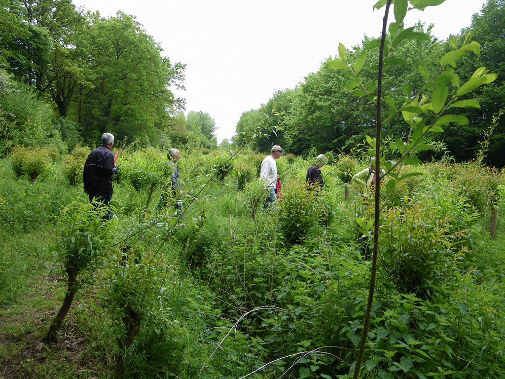 Les Jardins De La Robinière boucle circuit du moulin de la robiniÈre à la remaudiere