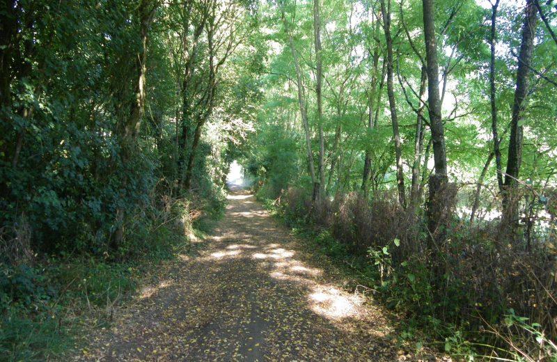 circuit-sangueze-le-pallet-levignobledenantes-tourisme(4)