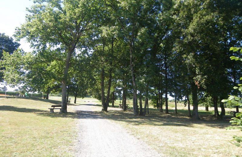 circuit-vignes-mouzillon-levignoblenantes-tourisme (3)