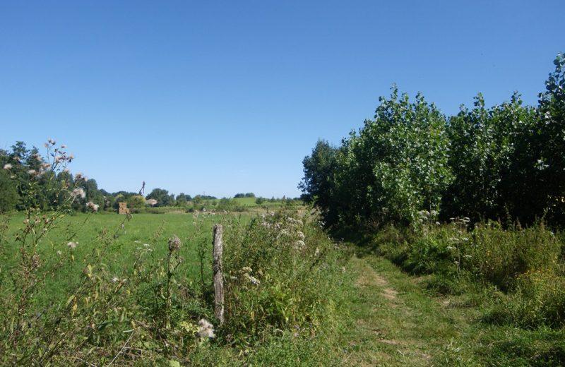 circuit-vignes-mouzillon-levignoblenantes-tourisme (6)