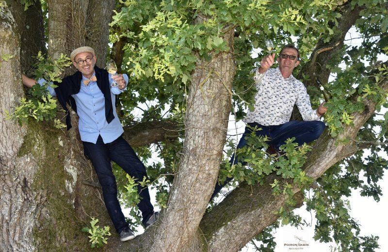 domaine-poiron-dabin-deux frères dans l'arbre-chateauthebaud-44