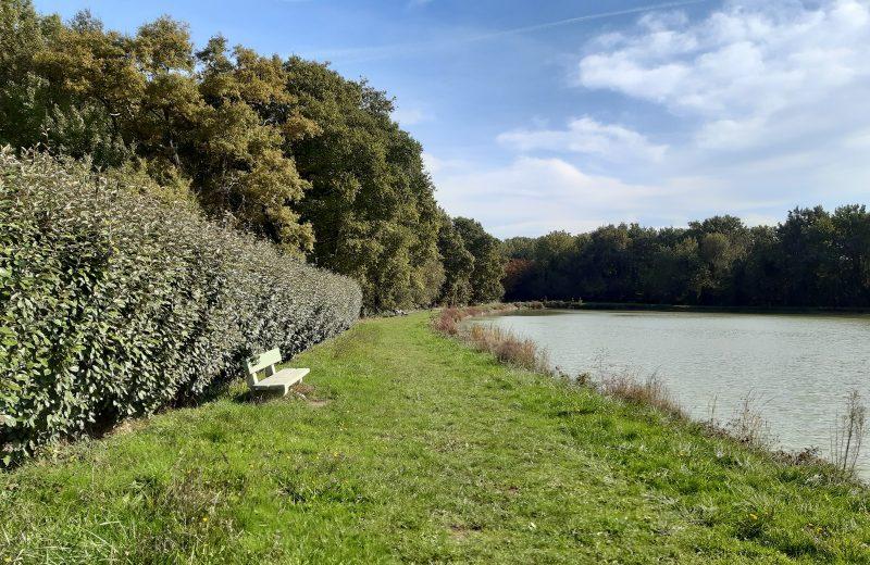 etang de stuilleries monnieres le vignoble de nantes tourisme7
